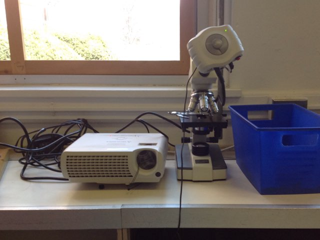 Microscope Lesson For 2nd Graders (Ethan And Jack) by Tim Teelin