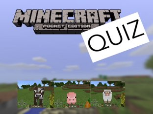 Minecraft Quiz by Emily Hyde
