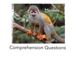 Monkey Comp. Questions LLI HCPSS by Chanel Sanchez
