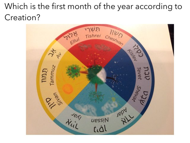 Months Of The Jewish Year by JS Kett