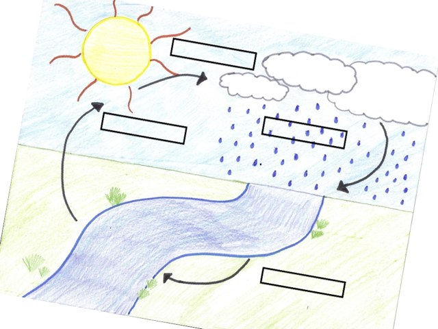 Mr. D Water Cycle Quiz by Mr. Ethan Deceuster