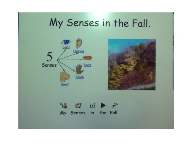 My Senses In The Fall by Sarah Severance