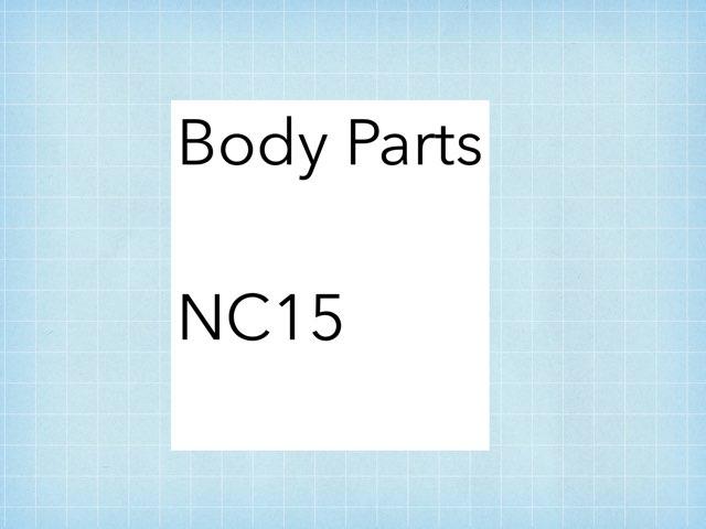 NC15 - Body Parts by Jenny Lehman