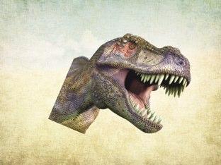 Name The Dinosaur by Pj Yale