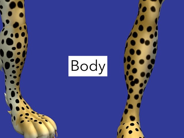 Nathan- Cheetahs by Keegan scelia