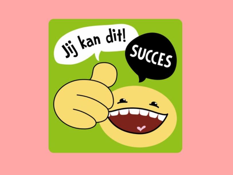 Nederlands op school. by Leen Van Den Broeck