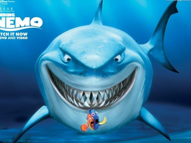 Nemo Shark by Marylyn Raleigh