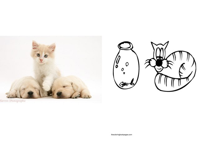 Next To - Between by Lisa Taylor
