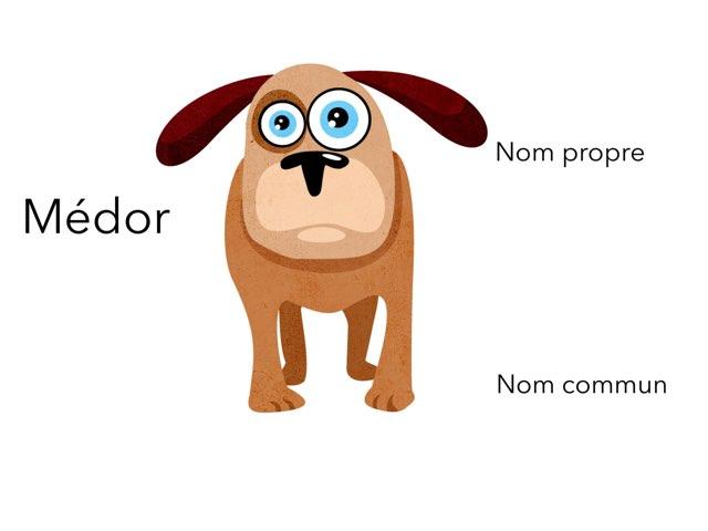 Nom Propre Nom Commun by Laetitia Monnier