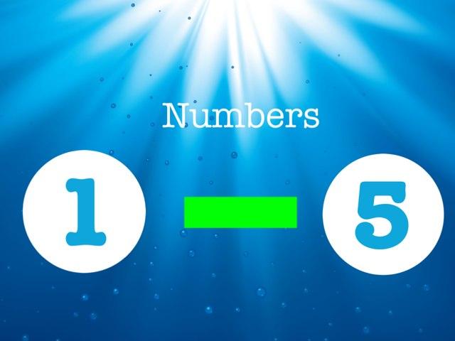 Numbers 1-5 (3in1) by Lisa Fryer