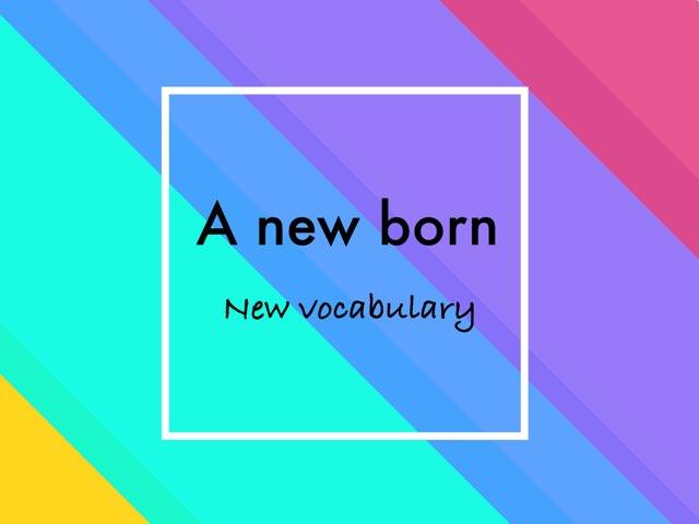 N.vocabulary by Sunshine Ali