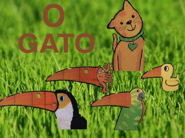 O GATO - Infantil 2 by TecEduc Porto