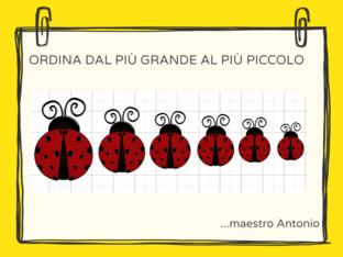 ORDINE DECRESCENTE by Antonio Costanzo