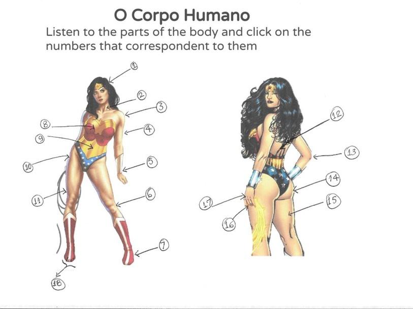 O Corpo Humano by Diva Fleming