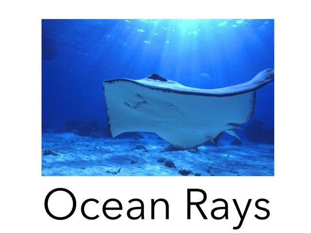 Ocean Rays by Ma wert