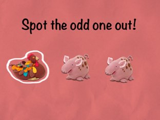 Odd One Out! by Gemma Fiume