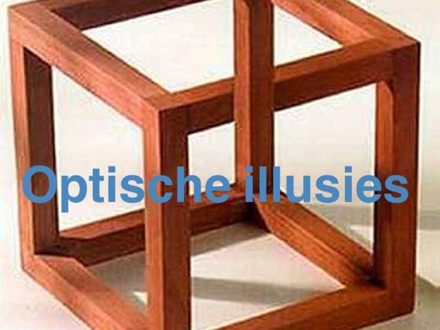 Optische Illusies by Inke De Busser