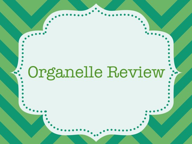 Organelle Review by Kaitlin Walker