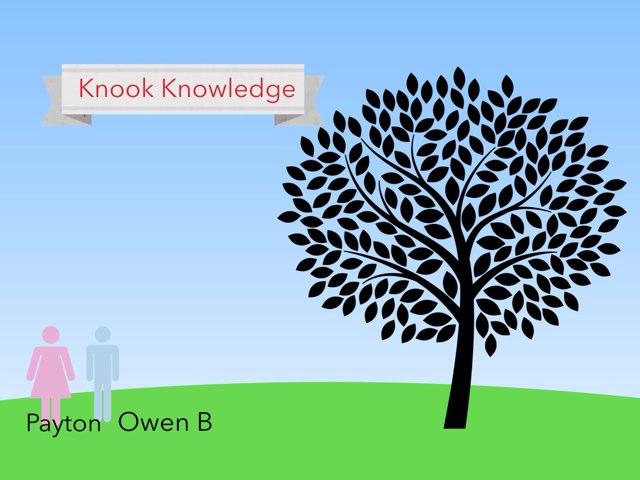 Owen B  by Dandy Lions