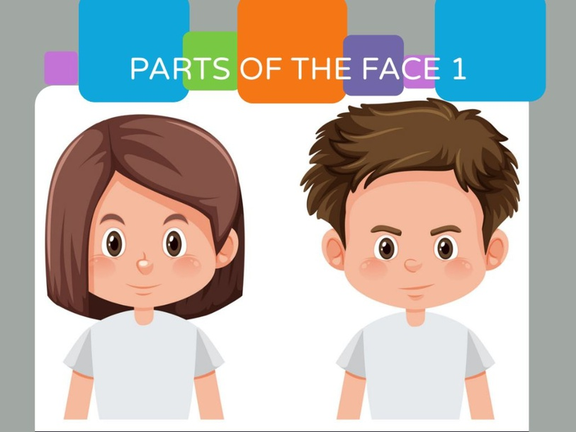 PARTS OF THE FACE by Keyla Cruz Bautista
