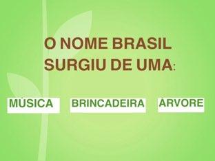 PAU-BRASIL by Educação Infantil Cfc