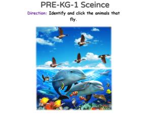 PRE-KG-1 Science 08/05/2021 by Vantage KG