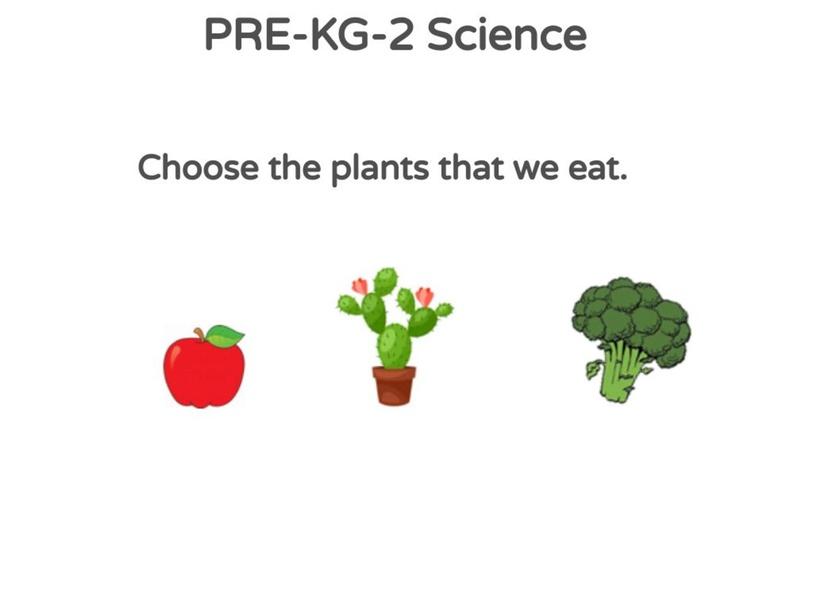 PRE-KG-2 Science 02/05/2021 by Vantage KG
