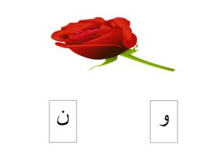 PRE-KG Arabic 02/05/2021 by Vantage KG