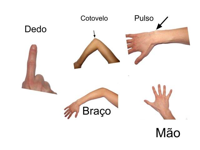 Partes Do Corpo  by Filomena Conceição