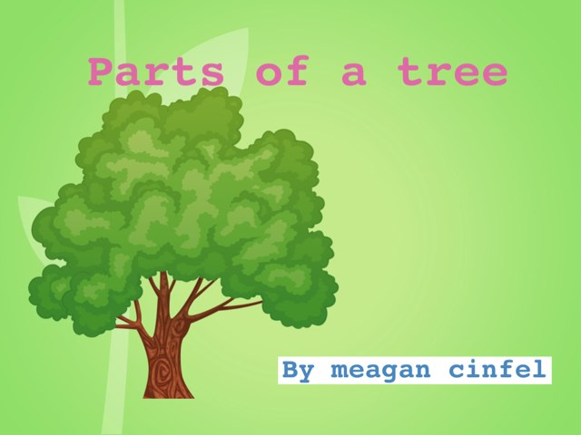 Parts Of A Tree  by meagan cinfel