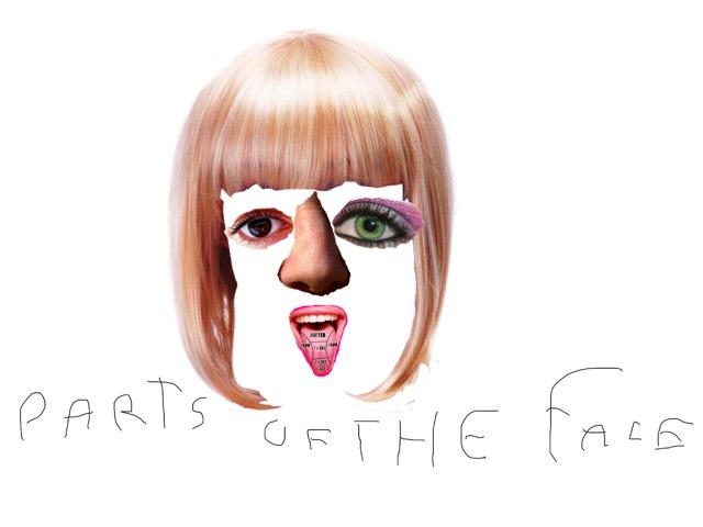 Parts Of The Face by Valeria Ferradas
