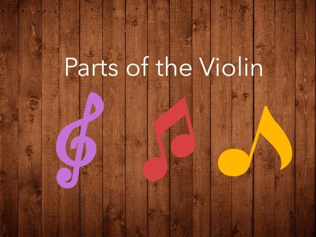 Parts Of The Violin  by Glenda Walsh Crouse