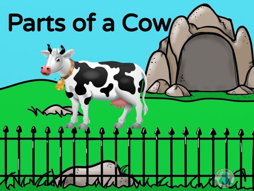 Parts of a Cow by Joycell Gallardo