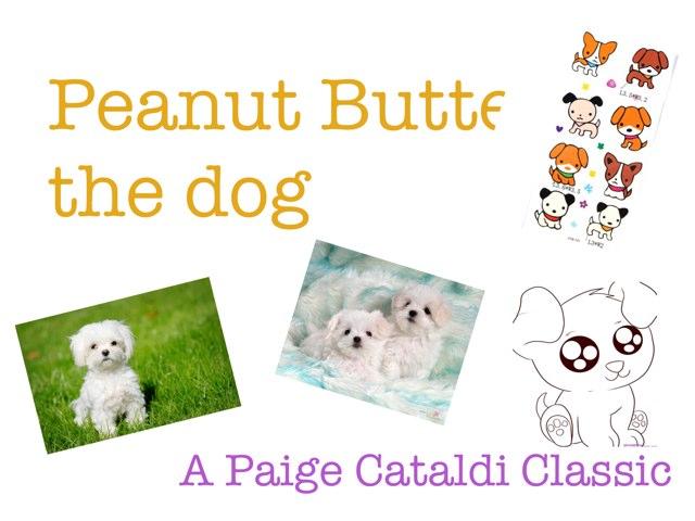 Peanut Butter by Paige Cataldi
