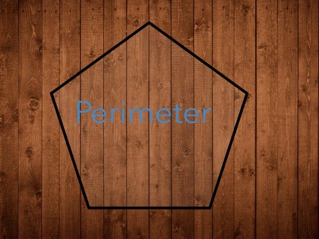 Perimeter  by Agustin Torres
