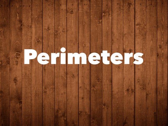 Perimeters by Nicolas cervantes