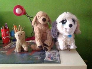Perros by Rosario Ramirez