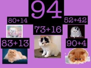 Persian Cat Math by Henri Helstowski