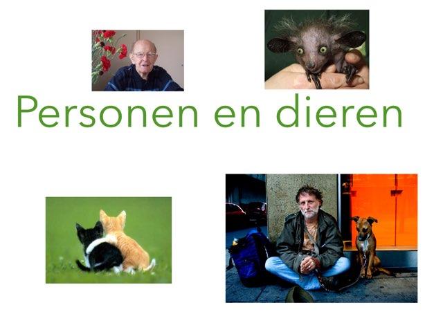Personen En Dieren Groep 4 by Wieke Jasper