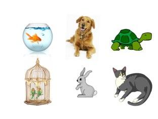 Pet, Farm and Zoo Animals by rhea po