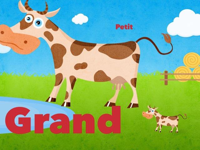 Petit Et Grand by Olivia Ranaivoharison