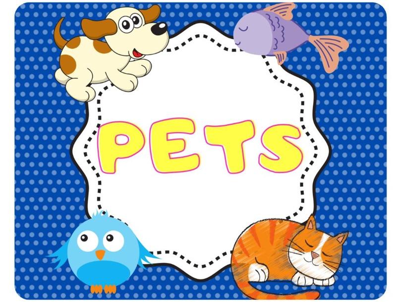 Pets. Selda by TC Selda Baştürk