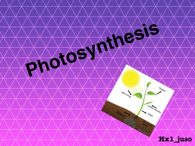 Photosynthesis  by hxi juso