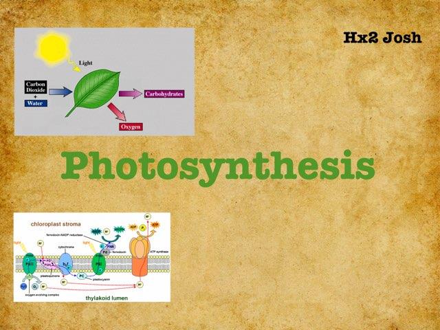 Photosynthesis  by hx2 josh