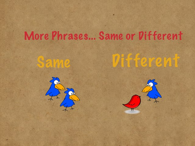 Phrases: Same or Different 2 by Drew Kunkel