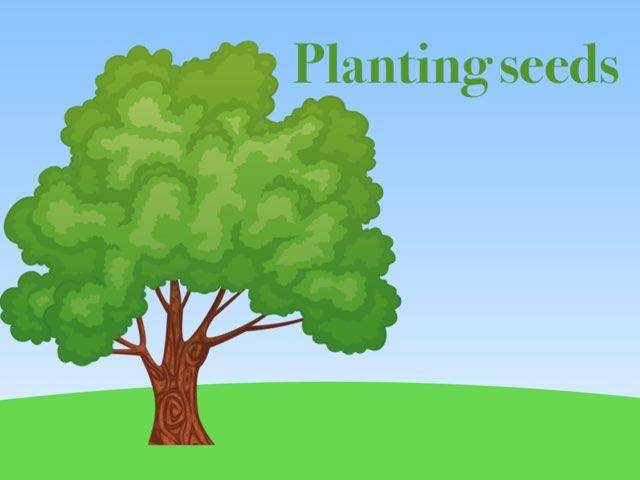 Plant A Apple Tree by Ann Cherner
