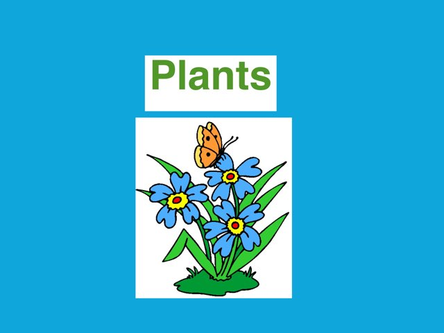 Plant Game BB by Alistair williamson