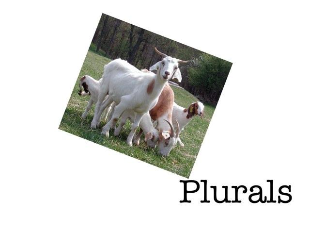 Plurals by Frazzled Teacher
