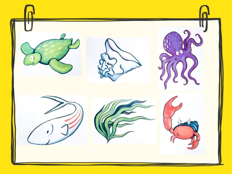 Plus Unit - Mr. Charlie (my new shell) - puzzle by Play & Learn English School