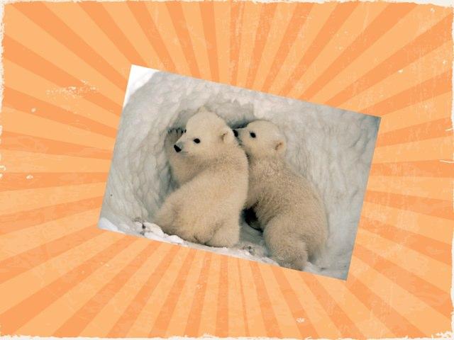 Polar by Annette Louis
